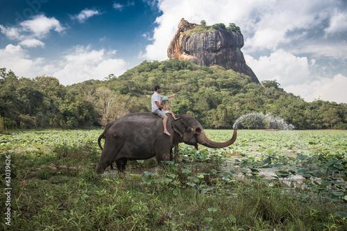 Canvas Print Elephant ride