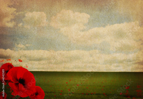 Canvas Print WW1 First World War Abstract Background with Poppies