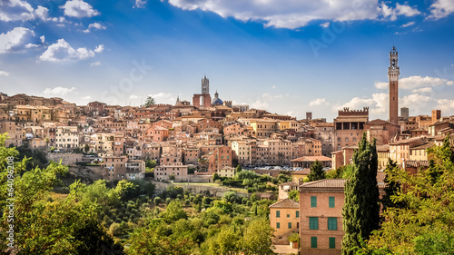 Obraz na plátně Scenic view of Siena town and historical houses
