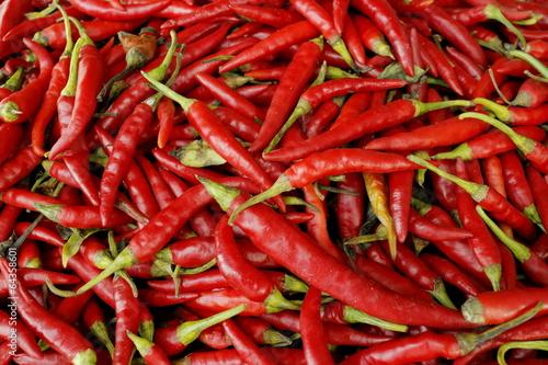 Foto 唐辛子 Red pepper