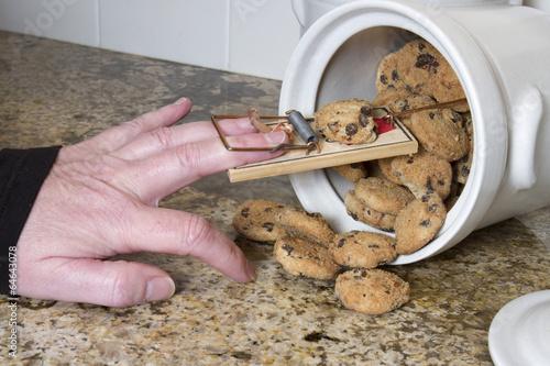 Slika na platnu Mousetrap in Cookie Jar