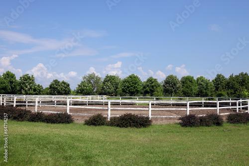 Fényképezés landscape with paddock trees and blue sky