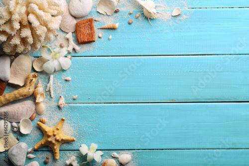 Fotografia Seashells on wood