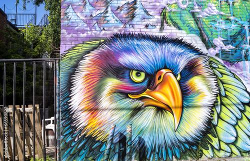 Oiseau de rue