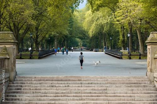 Foto Central Park New York
