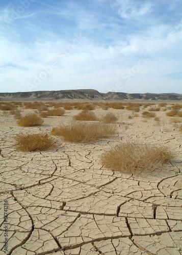 Egyptian Desert #66741286