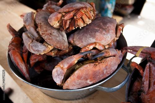 Tablou Canvas black crabs on kitchen at metal bucket
