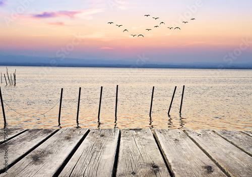 cañas en el lago de colores