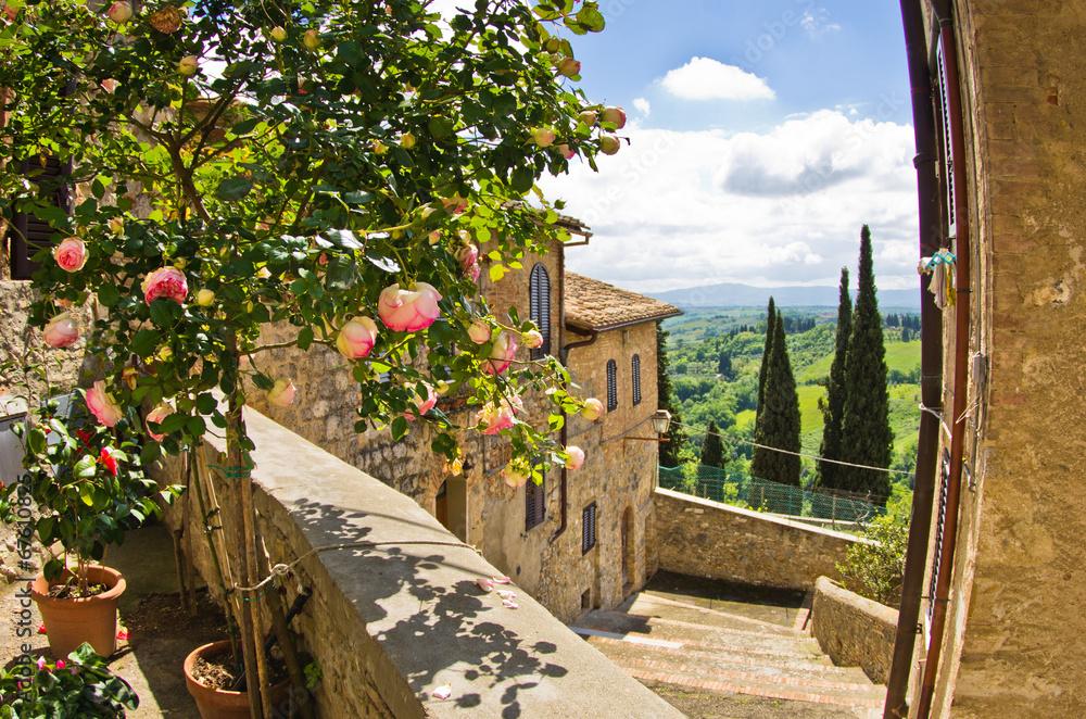 Róże przy balkonem w San Gimignano, Tuscany krajobrazowy tło <span>plik: #67610825 | autor: banepetkovic</span>