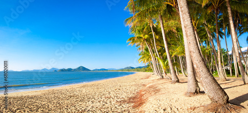 Canvas Print Tropical beach with palm trees
