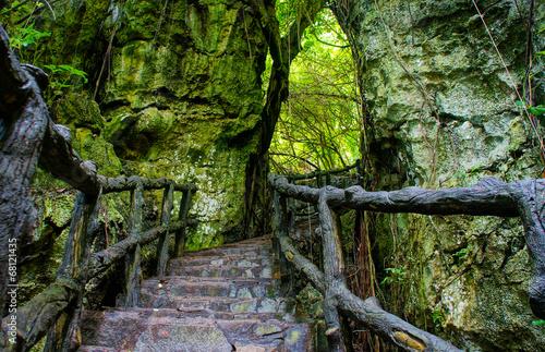Niesamowite kamienne schody, ogrodzenie, drzewo