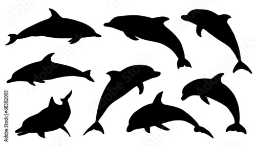 Canvas dolphin silhouettes