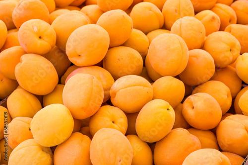 Fotografija Bright yellow apricots on display