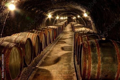 Wine cellar in Tokaj, Hungary Fototapeta