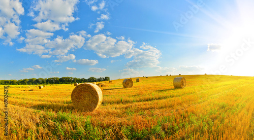 Fotografie, Tablou On a farm
