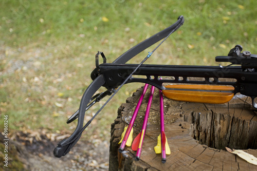 Obraz na plátně Crossbow arrows on the stub