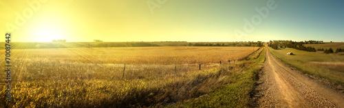 Fotografie, Obraz Sunrise Road