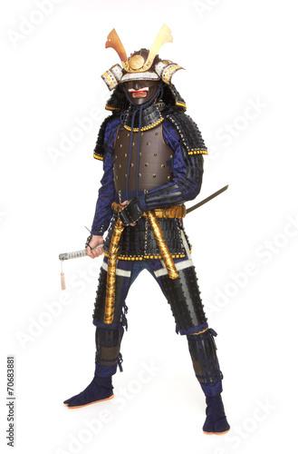 Tela Samurai in armor