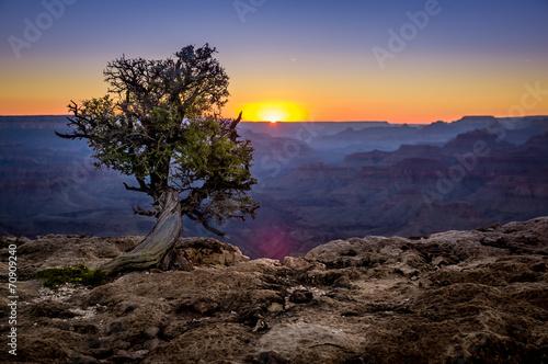 Photo grand canyon national park arizona