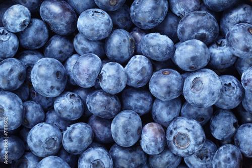Obraz na plátne fresh ripe  blueberries berries