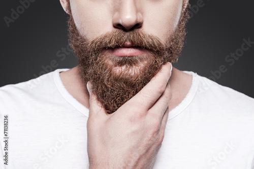 Fotografia Touching his perfect beard.