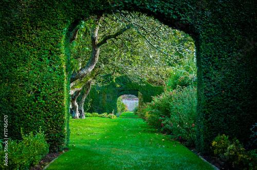 Fotografija Green plant arches in english countryside garden