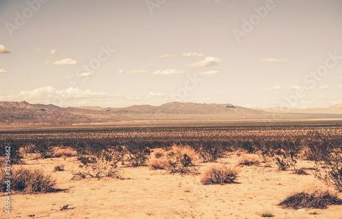Billede på lærred Southern California Desert
