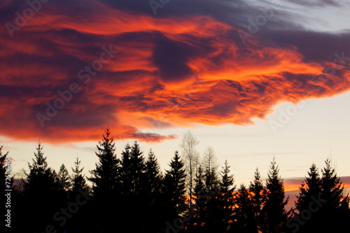 Photo Alpenglow over the forest