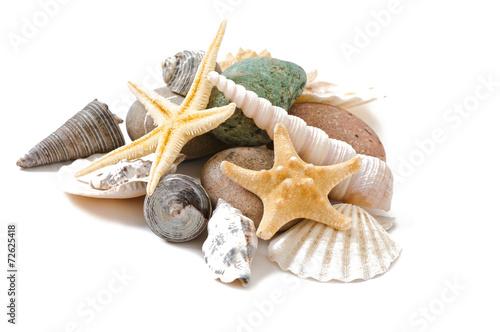 starfish, seashells and stones isolated on white background