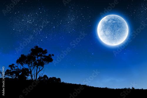 Canvas-taulu Full moon