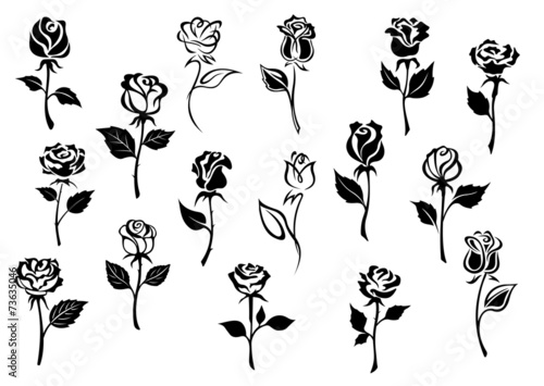 Canvas Print Black and white roses flowers