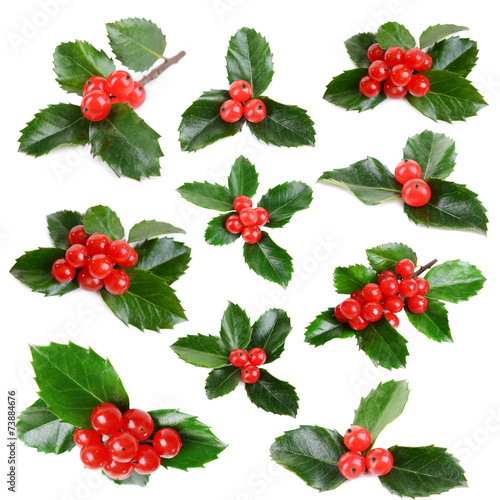 Stampa su Tela Leaves of mistletoe with berries collage, isolated on white