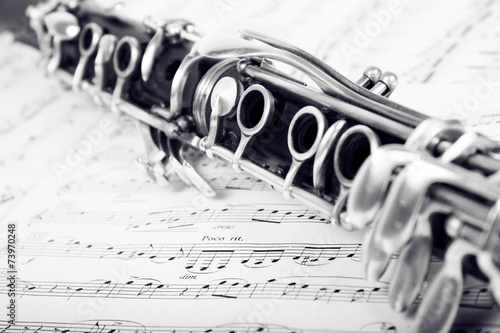 Canvas-taulu Musical notes and clarinet