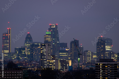 London, city skyline from Parliament Hill #73986669