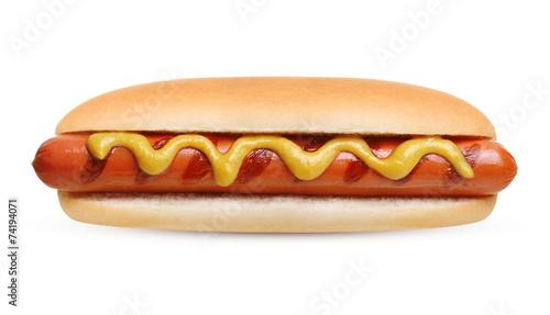 Fotografie, Obraz Hot dog grill with mustard