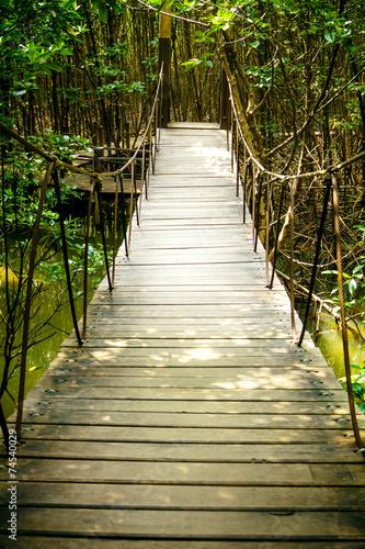 Las namorzynowy