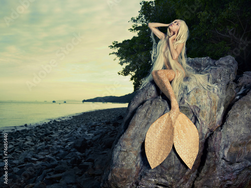 Photo Beautiful mermaid sitting on rock
