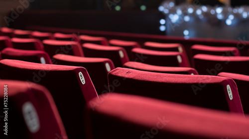 Cuadros en Lienzo Empty Theater Chairs