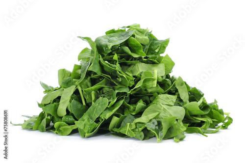 chopped raw chard leaves
