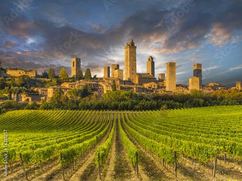 Fotografie, Obraz Vineyards of San Gimignano, Tuscany, Italy