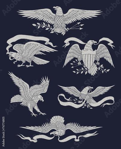 Stampa su Tela Hand Drawn Vintage Eagle Vector Set