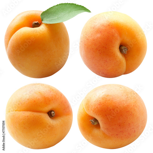 Fotografie, Obraz collection of fresh apricots with green leaf isolated on white b