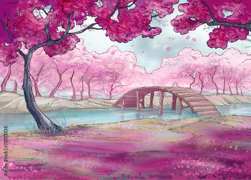 Spring. Cherry blossom. Japanese garden.
