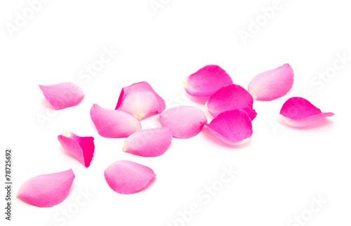 Petals of roses  #78725692