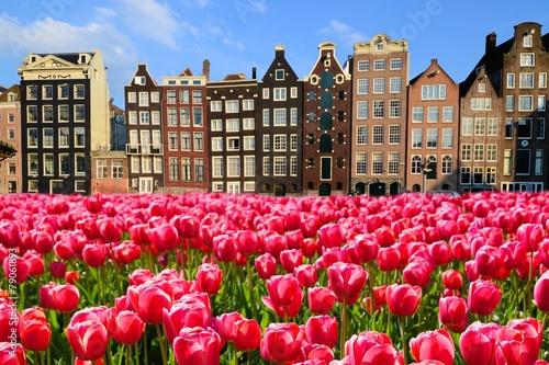 Naklejki na meble tulipany z kanałowymi domami w Amsterdamie