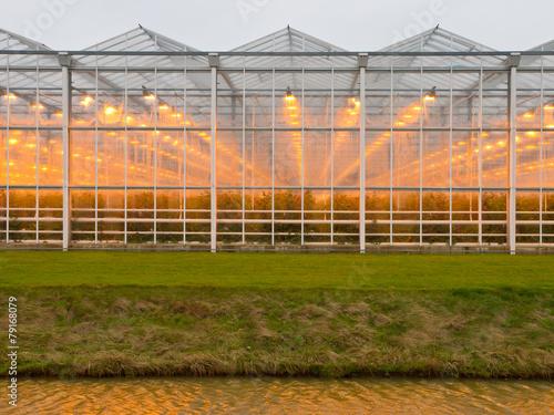 Valokuva background of a commercial glasshouse