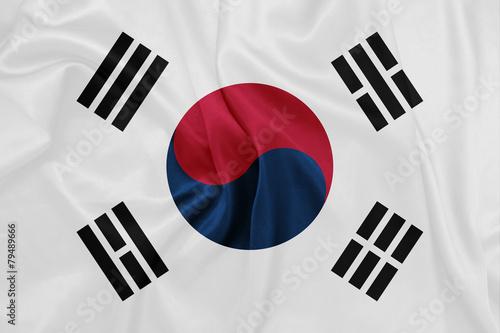 South Korea - Waving national flag on silk texture #79489666