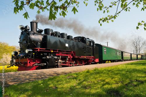 Obraz na plátně Historical German steam train in spring