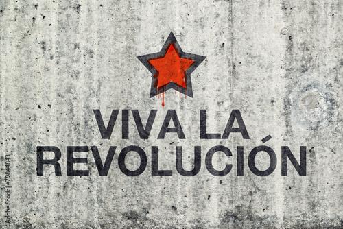 Viva La Revolucion Graffiti