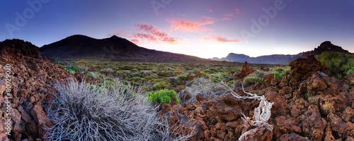 Canvas Print Tenerife Teide National Park